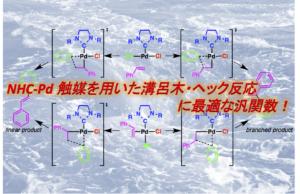 NHC-Pd 触媒を用いた溝呂木・ヘック反応に最適な汎関数!