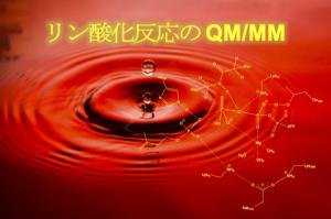 リン酸化反応の QM/MM