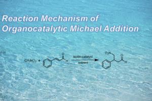 有機触媒を用いたマイケル付加の理論解析【溶媒効果】