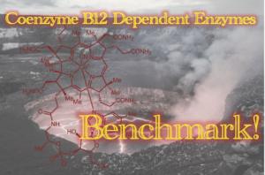 Coenzyme B12 依存性酵素 ONIOM 計算の汎関数ベンチマーク