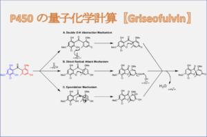 P450 の量子化学計算【Griseofulvin】
